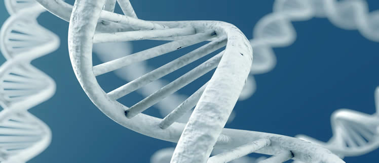 Genetic editing breakthrough in Joubert Syndrome